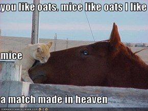 you like oats. mice like oats I like  mice a match made in heaven