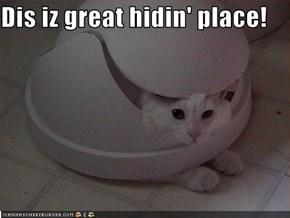 Dis iz great hidin' place!