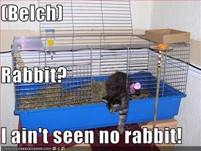 (Belch) Rabbit? I ain't seen no rabbit!