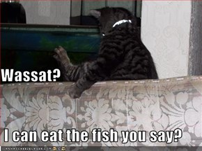 Wassat?   I can eat the fish you say?