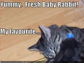 Yummy.  Fresh Baby Rabbit! My favourite....