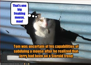 Tom was uncertain of his capabilities of subduing a mouse after he realized that Jerry had been on a Steroid trend