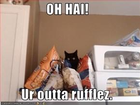 OH HAI!  Ur outta rufflez.