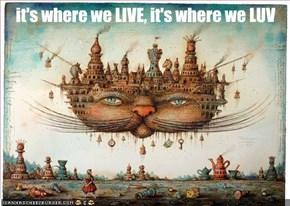 CHEEZLAND, ... a weird world, but we Luv it