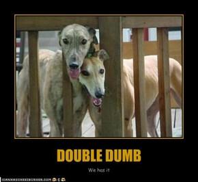 DOUBLE DUMB