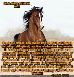 Ode to a Horse and the Old West