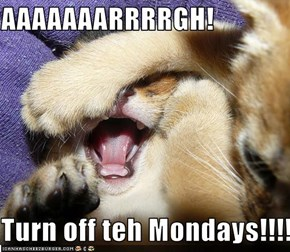 AAAAAAARRRRGH!  Turn off teh Mondays!!!!