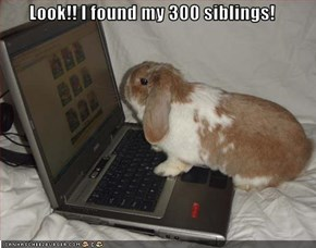 Look!! I found my 300 siblings!