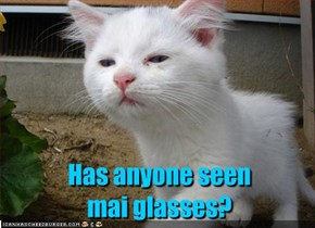 Has anyone seen mai glasses?