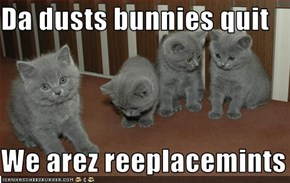 Da dusts bunnies quit  We arez reeplacemints