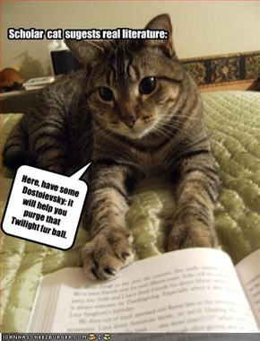 Scholar  cat  sugests real literature: