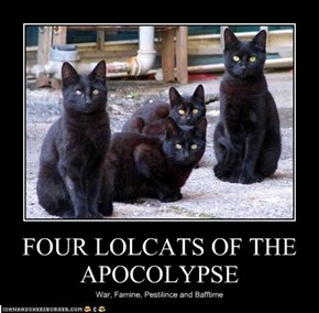 FOUR LOLCATS OF THE APOCOLYPSE