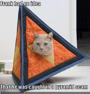 Frank had no idea  That he was caught in a pyramid scam