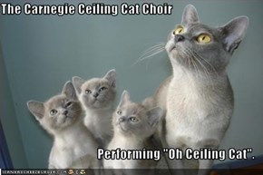 "The Carnegie Ceiling Cat Choir  Performing ""Oh Ceiling Cat""."
