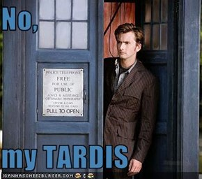 No,  my TARDIS