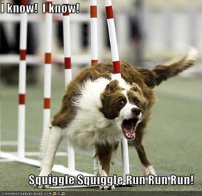 I know!  I know!  Squiggle Squiggle Run Run Run!