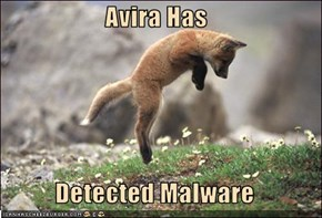 Avira Has  Detected Malware