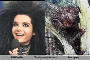 Bill Kaulitz Totally Looks Like Porcupine