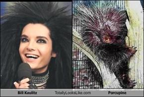 Bill Kaulitz Totally Looks Like Porcupine