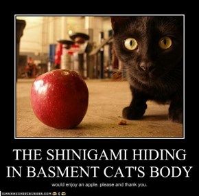 THE SHINIGAMI HIDING IN BASMENT CAT'S BODY