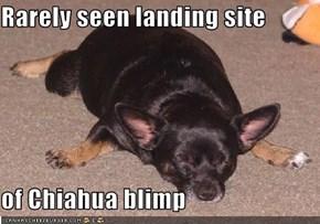 Rarely seen landing site  of Chiahua blimp