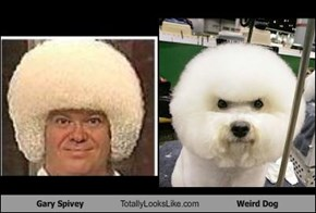 Gary Spivey Totally Looks Like Weird Dog