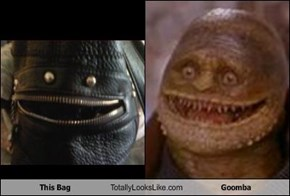 This Bag Totally Looks Like Goomba