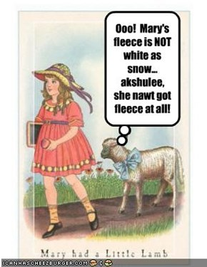 Ooo!  Mary's fleece is NOT white as snow... akshulee, she nawt got fleece at all!