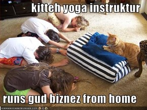 kitteh yoga instruktur   runs gud biznez from home