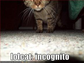 lolcat: incognito