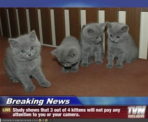 Breaking News - Study shows that 3 out of 4 kittens will not pay any attention to you or your camera.