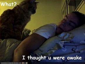 What?  I thought u were awake