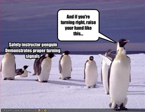 Safety instructor penguin