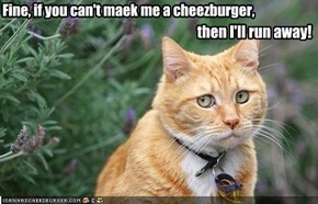Fine, if you can't maek me a cheezburger,
