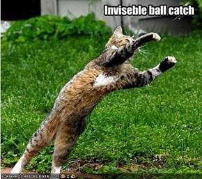 Inviseble ball catch