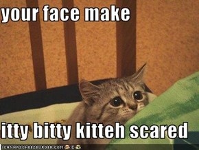 your face make  itty bitty kitteh scared