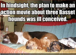 In hindsight, the plan to make an action movie about three Basset hounds was ill conceived.