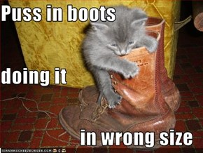 Puss in boots  doing it  in wrong size