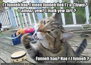 I'z funneh hao, I meen funneh liek I'z a clown?        I amoose yew? I maik yew larff?