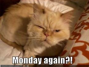 Monday again?!