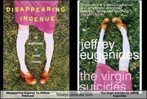 Disappearing Ingenue  by Melissa Pritchard Totally Looks Like The Virgin Suicides by Jeffrey Eugenides