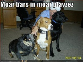 Moar bars in moar playzez