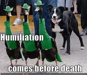 Humiliation comes before death