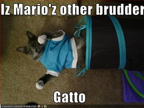 Iz Mario'z other brudder  Gatto