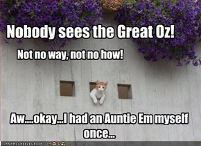 Nobody sees the Great Oz!
