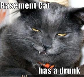 Basement Cat  has a drunk