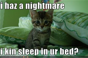 i haz a nightmare  i kin sleep in ur bed?