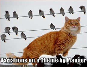 Variations on a Theme by Mauser