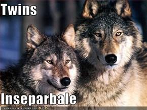 Twins  Inseparbale