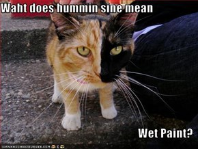 Waht does hummin sine mean  Wet Paint?